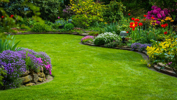 Beau jardin avec gazon bien tondu
